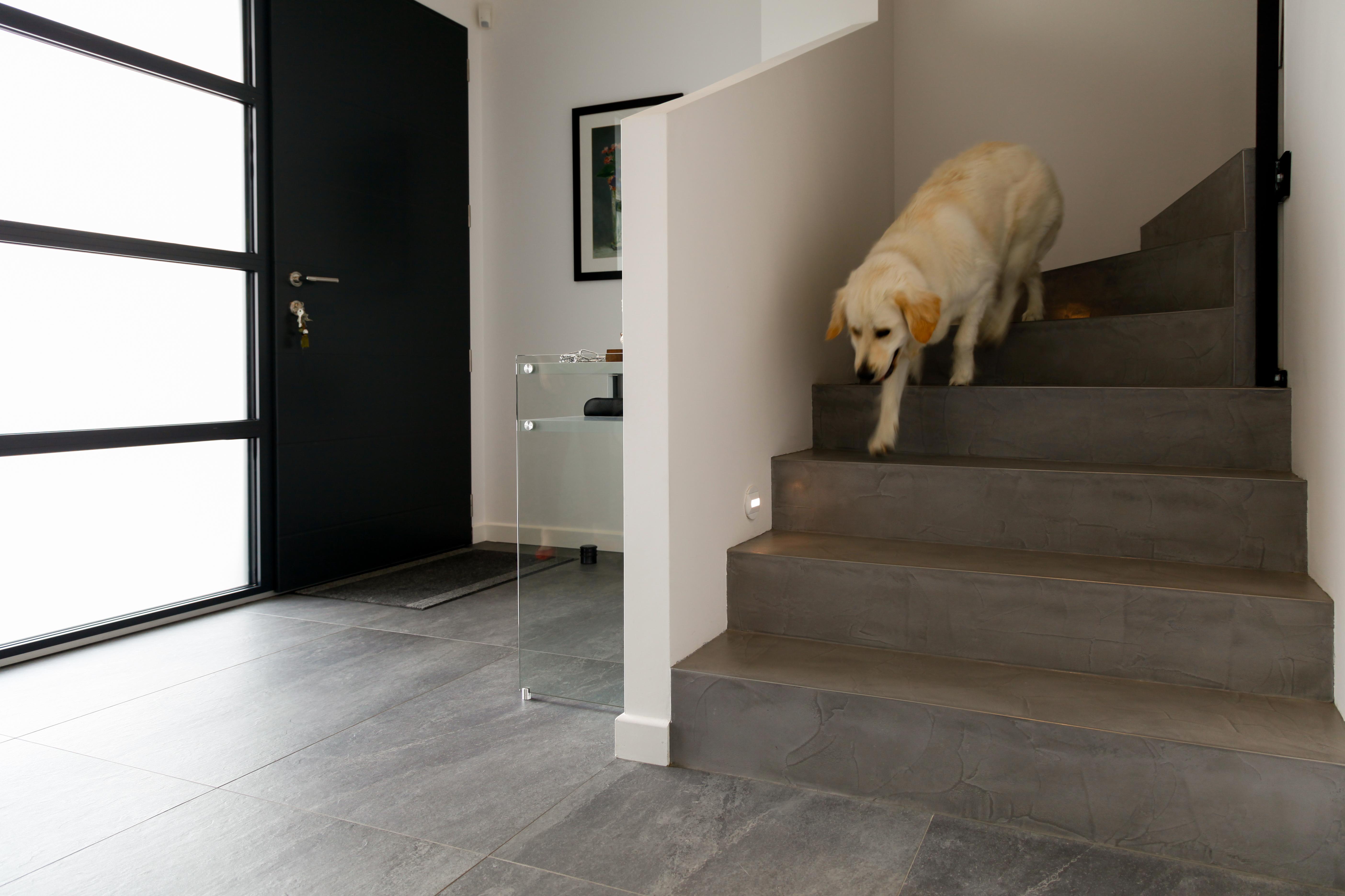 Escalier et Entrée